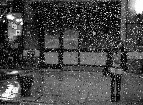 Stand in the Rain, por Alyssa L. Miller