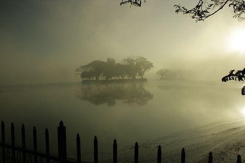 Misty Morning, por Swami Stream