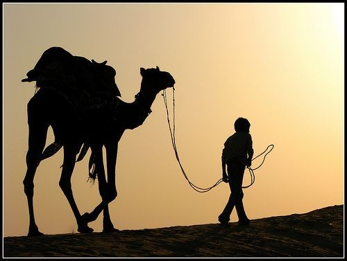 Walking towards paradise.. EXPLORED, por Manoj Kengudelujpg