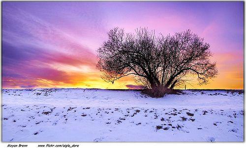 Sunset, por Moyan_Brenn