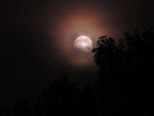 Moon, por Ron Lute
