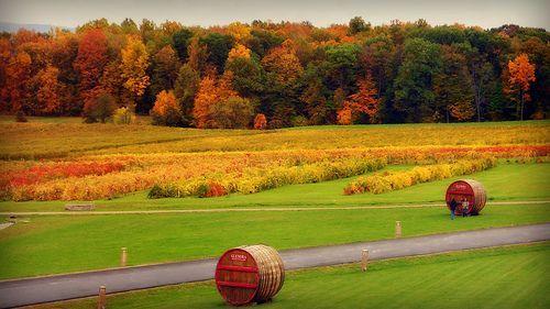 Autumn Landscape, por blmiers2