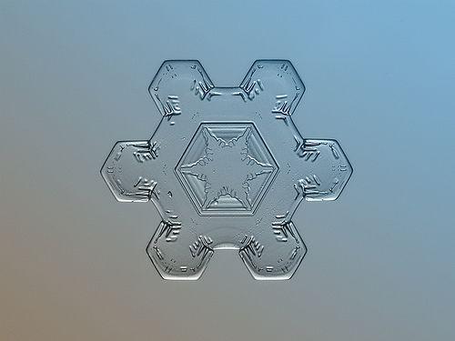 Snow flower (print version), por Alexey Kljatov