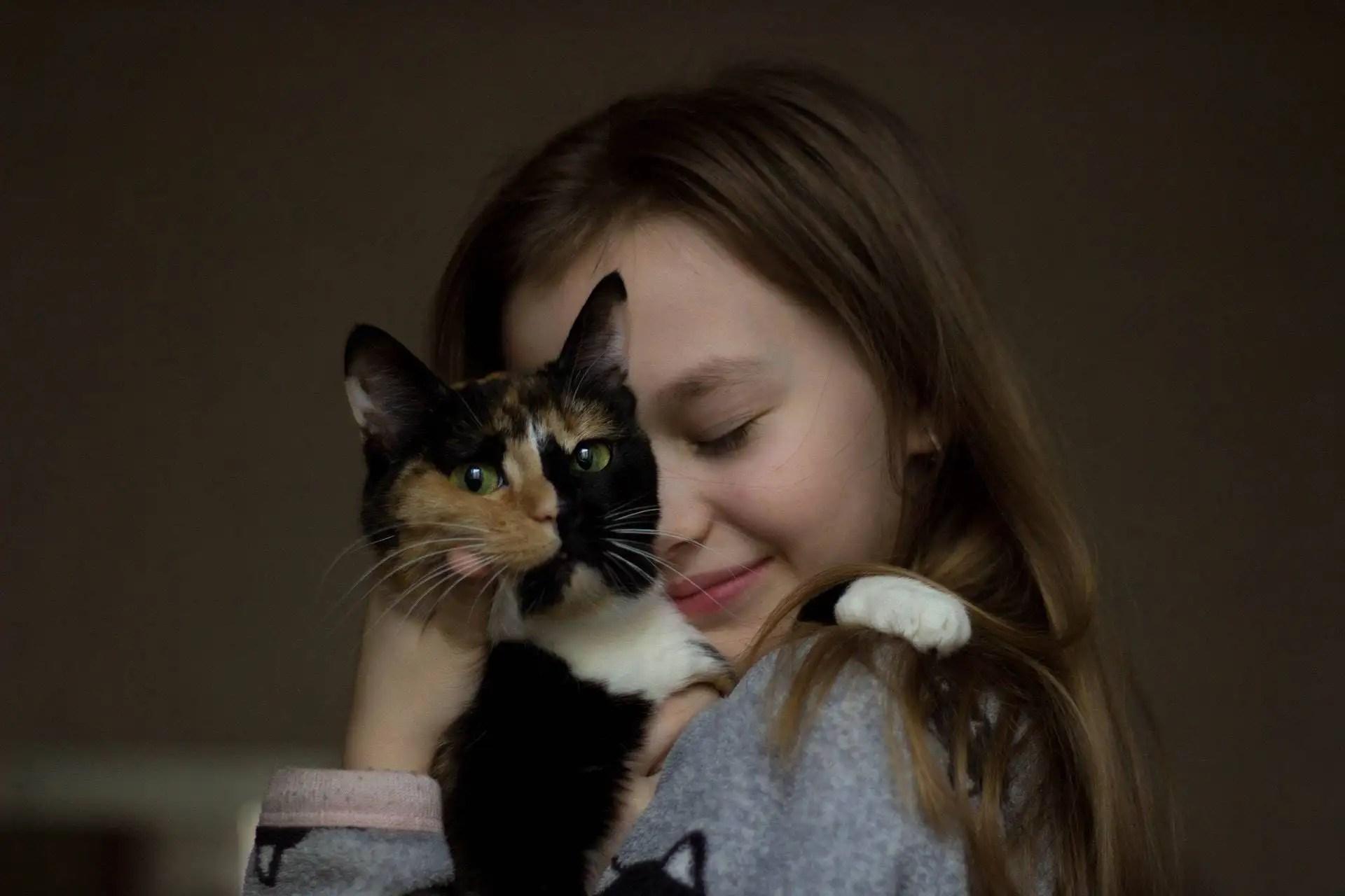 Principales razones por las que amamos a los gatos