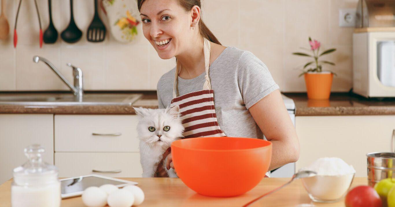 Recetas de golosinas para gatos