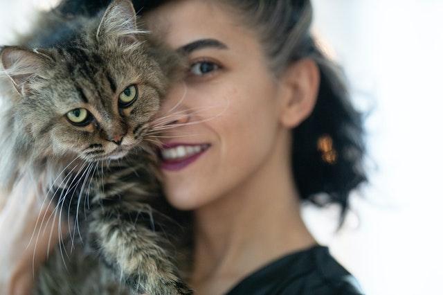 ¿Es posible comunicarte con tu gato?