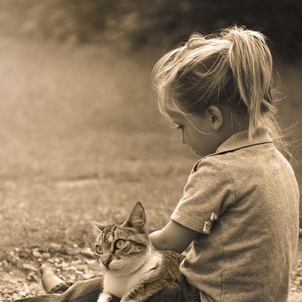 Por qué los niños aman tanto a los gatos