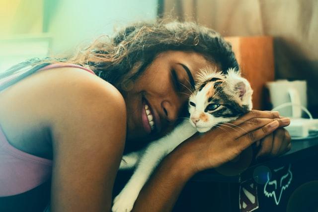 Cómo saber si tu gato te ama