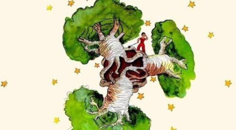 Un baobab dans le cœur, une réflexion du Petit Prince