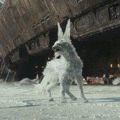 TLJ Trailer #2: Crystal fox