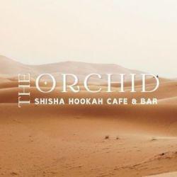 ORCHID – オーキッド シーシャバー(静岡シーシャ)