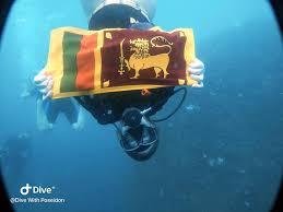 sri lanka underwater museum trinco sandy bay beach east coast dive (4)