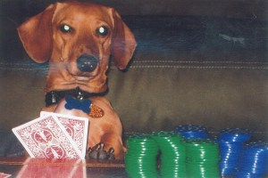 This is Pablo's poker face.....