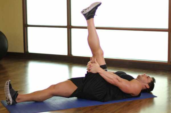 Все мышцы – Строение мышц человека — схема, фото