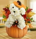 Best White Pumpkin Fall Floral Arrangement Ideas To Copy Asap37