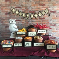 Favorite Diy Harry Potter Party Design Ideas For Halloween To Try10