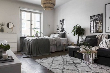 Flawless Diy First Apartment Design Ideas For Living Room39