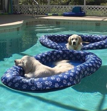 Inexpensive Summer Pool Design Ideas On A Budget41