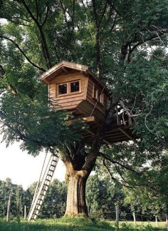 Rustic Diy Tree Houses Design Ideas For Your Kids And Family14