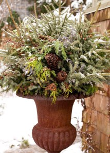 Sophisticated Container Garden Flower Ideas For This Winter To Try04