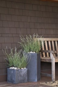 Sophisticated Container Garden Flower Ideas For This Winter To Try20
