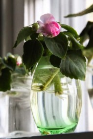 Awesome Indoor Water Garden Design Ideas That Refresh Your Interiors11