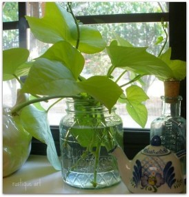 Awesome Indoor Water Garden Design Ideas That Refresh Your Interiors14