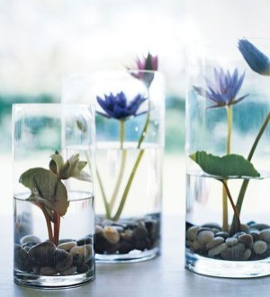 Awesome Indoor Water Garden Design Ideas That Refresh Your Interiors26