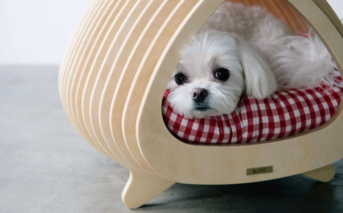 Captivating Plywood Dog House Design Ideas With Fishbone To Insoire You19