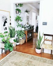 Lovely Indoor Jungle Decor Ideas To Try Asap15