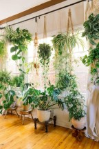 Lovely Indoor Jungle Decor Ideas To Try Asap17