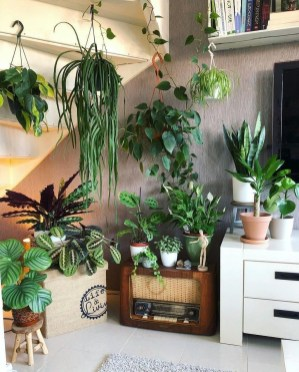 Lovely Indoor Jungle Decor Ideas To Try Asap18