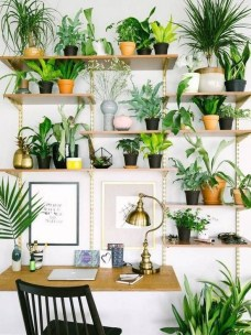 Fascinating Home Office Design Ideas With Beautiful Plants To Try Asap04