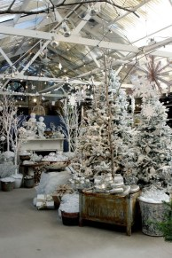 Favorite Winter Tree Display Design Ideas For Small Spaces05