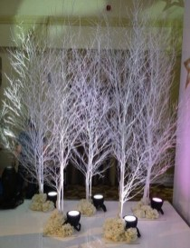 Favorite Winter Tree Display Design Ideas For Small Spaces27
