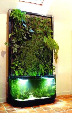 Glamorous Aquariums Design Ideas For Cool Interior Styles To Have28