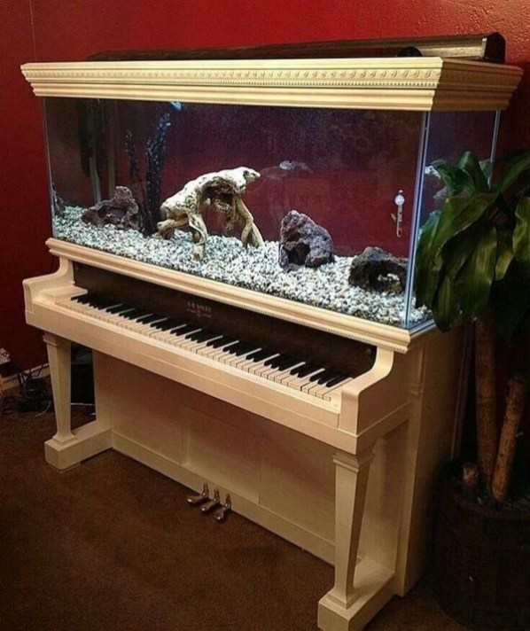 Glamorous Aquariums Design Ideas For Cool Interior Styles To Have32