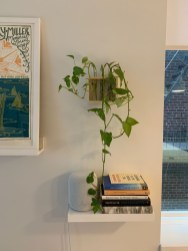 Trendy Plywood Bookshelf Design Ideas With Floating Effects To Try Asap17