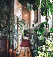 Unusual Indoor Garden Design Ideas With Scandinavian Style To Have01