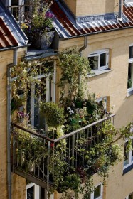 Adorable Rooftop Gardens Design Ideas That Looks Awesome12