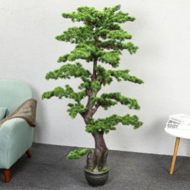 Fascinating Bonsai Tree Design Ideas For Your Room12