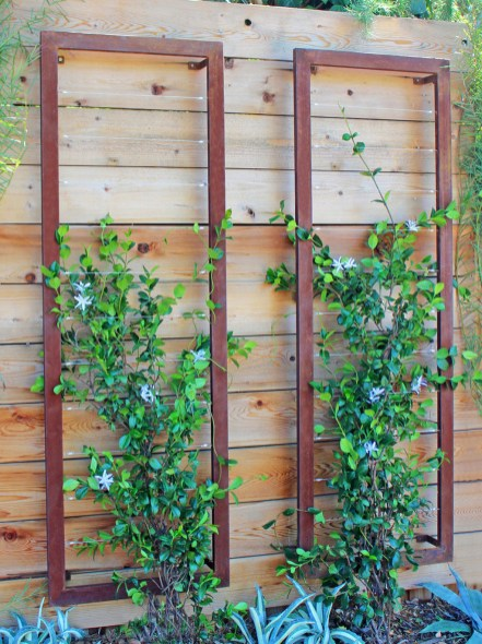 Enchanting Living Fences Design Ideas That Suitable For Your Yard 06