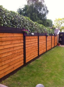 Enchanting Living Fences Design Ideas That Suitable For Your Yard 13