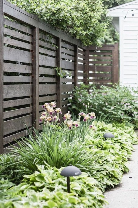 Enchanting Living Fences Design Ideas That Suitable For Your Yard 26