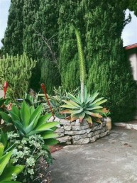 Beautiful Front Yard Cactus Garden Ideas 10