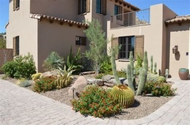 Beautiful Front Yard Cactus Garden Ideas 13