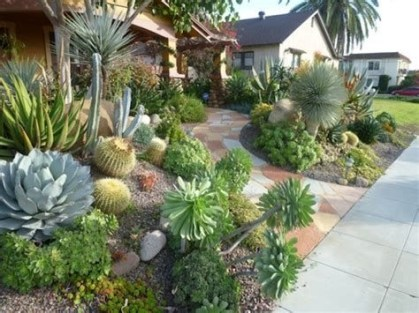 Beautiful Front Yard Cactus Garden Ideas 18