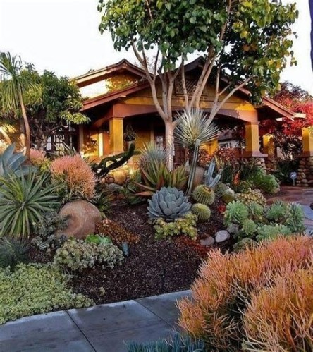 Beautiful Front Yard Cactus Garden Ideas 29