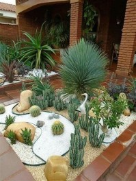 Beautiful Front Yard Cactus Garden Ideas 40