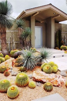 Beautiful Front Yard Cactus Garden Ideas 42